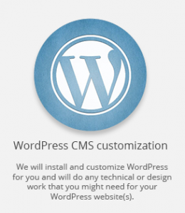 WP custommization